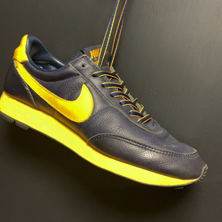 ナイキ(NIKE)の1999 NIKE LDV LEATHER LE SC  Michiganカラー(スニーカー)