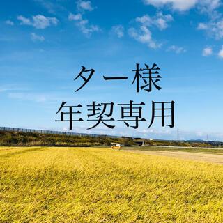 【ター様 年契専用19〜21‼️】あきたこまち精米27Kg10Kg 玄米60Kg(米/穀物)