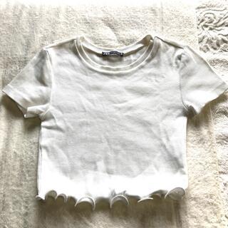 ザラ(ZARA)のZARA ザラ 白T 白ティー XS 白Tシャツ 半袖 ショート丈(Tシャツ/カットソー(半袖/袖なし))
