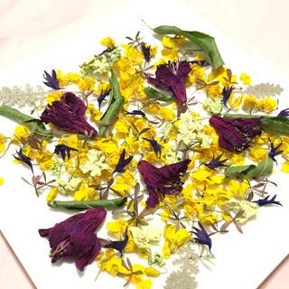 小さな小さなお花の花材 菜の花 矢車草 ツツジ ナチュラル 素材  Y(ドライフラワー)