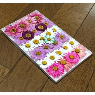 ② 銀の紫陽花が作った可愛いマーガレットのドライフラワー(ドライフラワー)