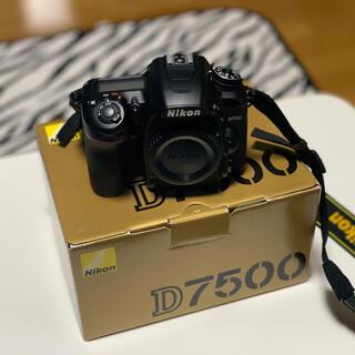 Nikon - D7500 本体
