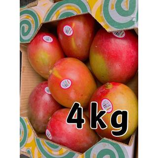 コストコ(コストコ)のコストコ マンゴー 4kg 大玉(フルーツ)