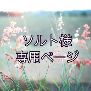 ソルト様専用(ポップス/ロック(邦楽))