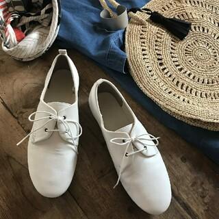 ムジルシリョウヒン(MUJI (無印良品))の◆新品◆ 無印良品 レースアップシューズ/ 24.5cm/オフ白(ローファー/革靴)