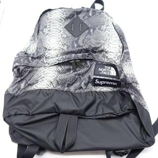 Supreme - SUPREME THE NORTH FACE Lightweight Bag