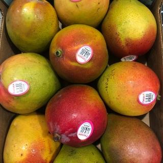 コストコ(コストコ)のマンゴー 4キロ メキシコ産(フルーツ)