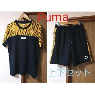 PUMA - Puma 上下(Tシャツ&半パン)セット サイズ違い