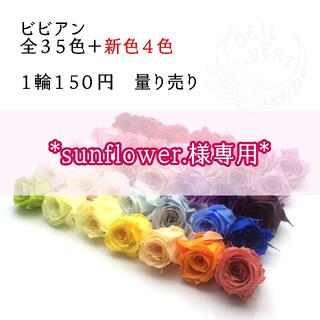 *sunflower.様専用*(プリザーブドフラワー)