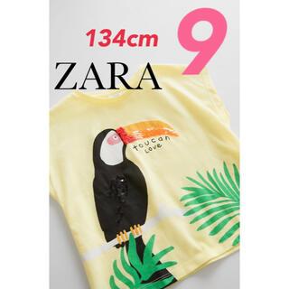 ザラ(ZARA)の【新品・タグ付き】ZARA スパンコール 半袖 Tシャツ 9歳 134cmオウム(Tシャツ/カットソー)