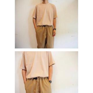 AURALEE オーラリー LUSTER-SS-TEE ピンクベージュ5(Tシャツ/カットソー(半袖/袖なし))
