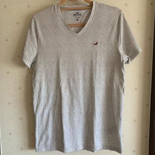 Hollister - ホリスター Tシャツ ロゴ カットソー