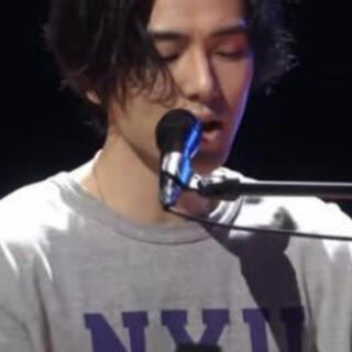 チャンピオンペットフーズ - サイズM NYU Tシャツ 新品