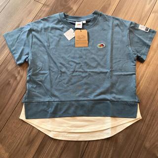 ザノースフェイス(THE NORTH FACE)の新品 フルーツオブザルーム  重ね着風Tシャツ 半袖(Tシャツ/カットソー)