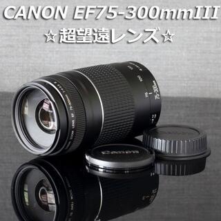 美品 キャノン純正望遠レンズCANON EF75-300mm III型