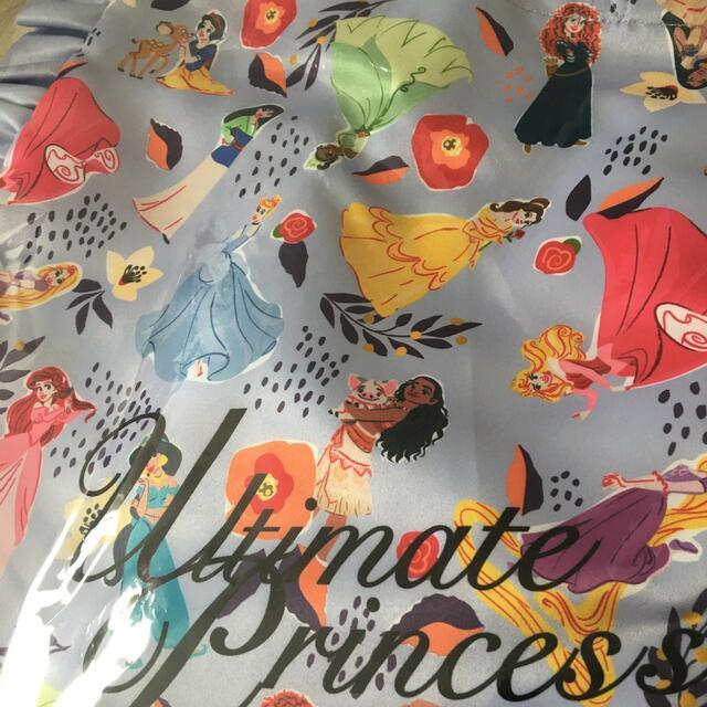 Disney(ディズニー)のマジカルプリンセスキャンペーン☆A賞 非売品 エンタメ/ホビーのおもちゃ/ぬいぐるみ(キャラクターグッズ)の商品写真