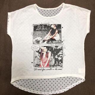 シマムラ(しまむら)のしまむら プリントドットTシャツ Mサイズ(Tシャツ(半袖/袖なし))
