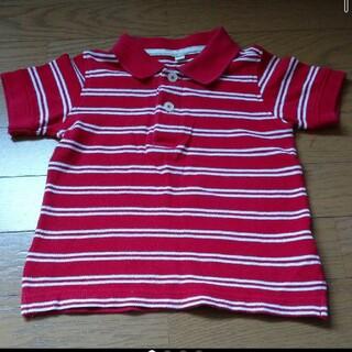 赤いポロシャツ♪