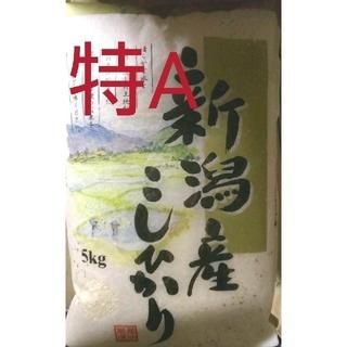 新潟県産コシヒカリ白米5㎏(令和2年産)(米/穀物)