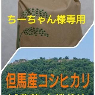 ちーちゃん様専用(米/穀物)