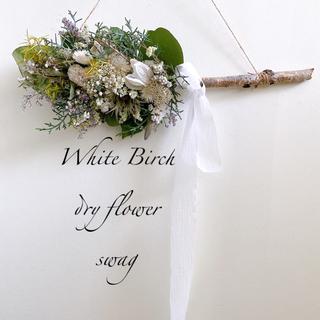 ドライフラワー WhiteBirch 白樺 スワッグ 横長スワッグ(ドライフラワー)