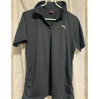プーマ(PUMA)のPUMA プーマのポロシャツ Lサイズ(ポロシャツ)
