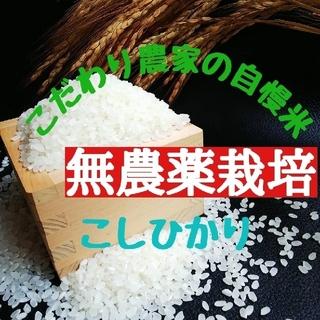 こだわり農家の自慢米 白米10㎏(無農薬栽培)(米/穀物)