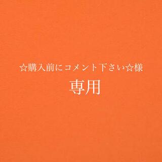☆購入前にコメント下さい☆様専用(キーホルダー)