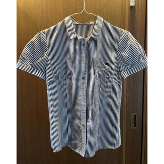 BURBERRY BLUE LABEL - バーバリーブルーレーベル38ストライプシャツ