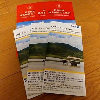 ジャル(ニホンコウクウ)(JAL(日本航空))の日本航空の株主優待のご案内×3冊(その他)