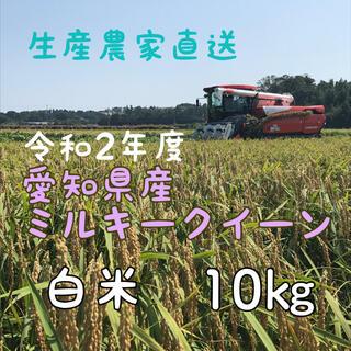 愛知県産ミルキークイーン 白米10㎏(米/穀物)
