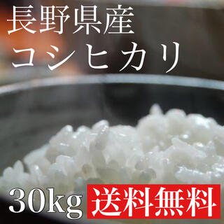 【特A地区】新米白米30kg 長野県産コシヒカリ(米/穀物)