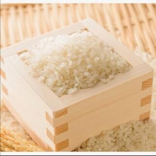 魚沼産コシヒカリ玄米(米/穀物)