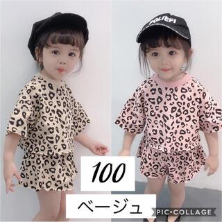 即納 100 韓国子供服 レオパード トップス ショートパンツ セットアップ