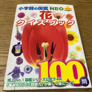 花クイズブック 小学館の図鑑NEO(絵本/児童書)