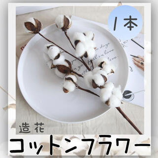 造花  白 コットン フラワー ドライフラワー t  韓国 綿花 インテリア(ドライフラワー)