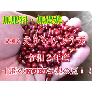 小豆 7kg(米/穀物)