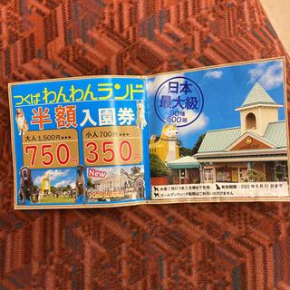 つくばワンワンランド半額券(遊園地/テーマパーク)