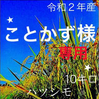 ⭐️ことかず様専用⭐️ 減農薬、有機特別栽培米 色彩選別済1等米ハツシモ10キロ(米/穀物)