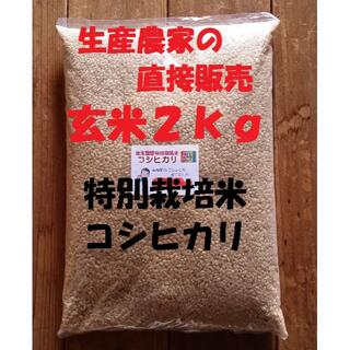 ★新米★[玄米]特別栽培米コシヒカリ2kg生産農家の直接販売(米/穀物)