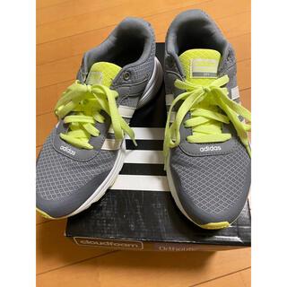 アディダス(adidas)のアディダス neo レディースランニングシューズ 24cm(スニーカー)