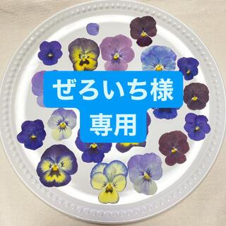 エディブルフラワービオラの押し花(ドライフラワー)