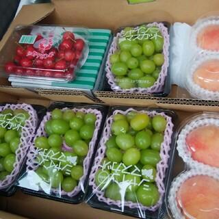 シャインマスカットと白桃とさくらんぼ(フルーツ)