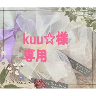 セイカツノキ(生活の木)のkuu☆様専用   生活の木 水出しできる。(茶)