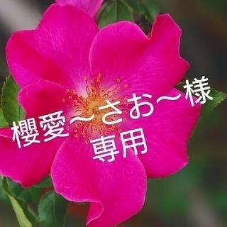 櫻愛~さお~様専用(ドライフラワー)
