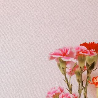 ディオール(Dior)のryui様(その他)