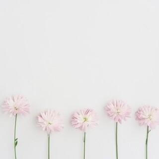 ジェラートピケ(gelato pique)の【新品未使用】ジェラートピケ 新生児~(帽子)