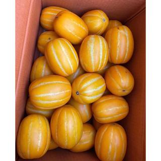 韓国チャメメロン 5kg  韓國香瓜(フルーツ)