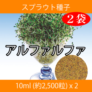 スプラウト種子 S-16 アルファルファ 10ml 約2,500粒 x 2袋(野菜)