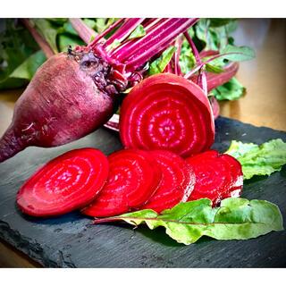 農薬化学肥料不使用栽培ビーツ 約1.2kg(野菜)